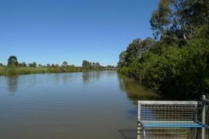 Wetland @ Riverdale Park