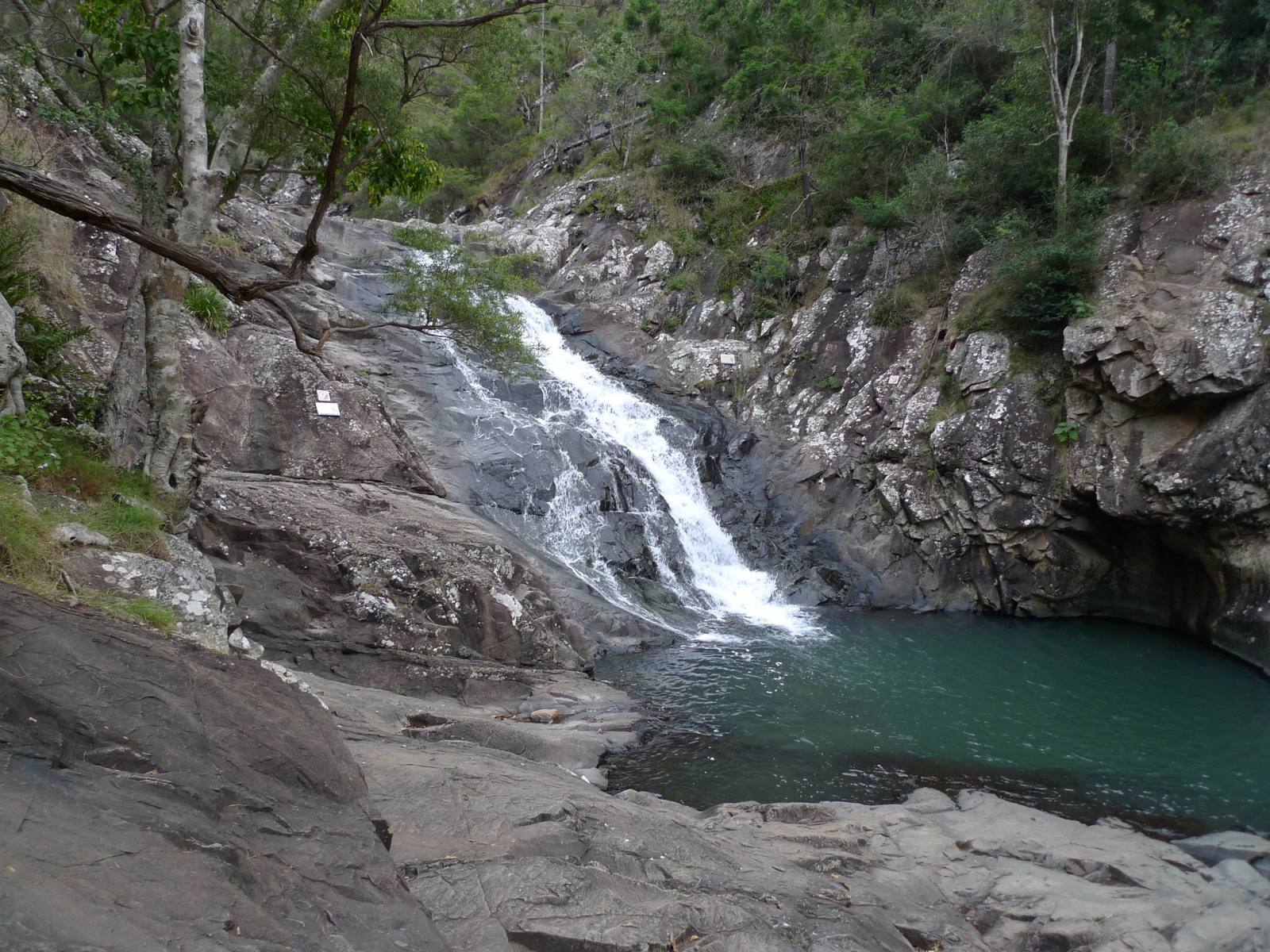 Cedar creek fall mount tamborine live in bne for Ceader creek