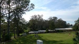 Grass Area @QCCC tambourine