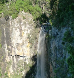 Purling Brook Falls@Springbrook