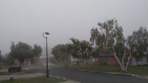 Foggy Brisbane