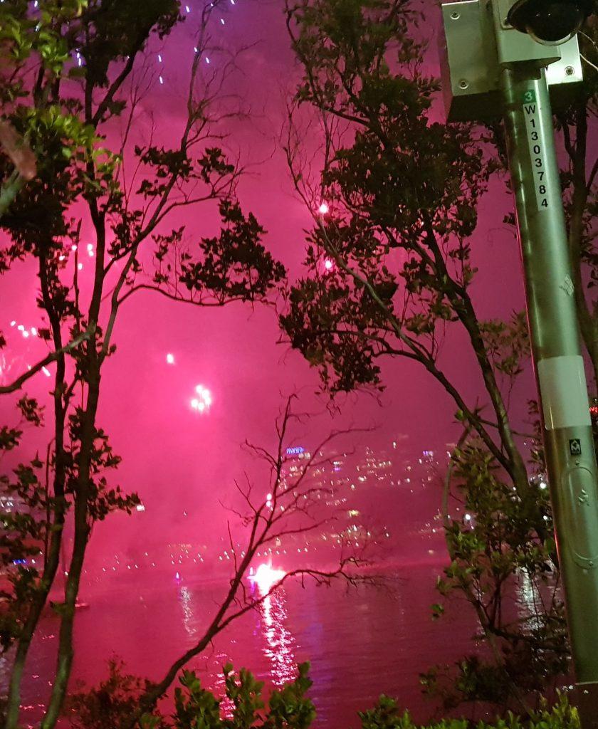 RiverFire 2018- Fireworks from Jet Ski